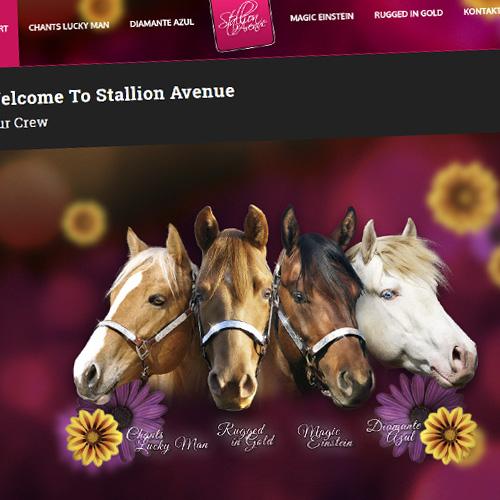 StallionAvenue