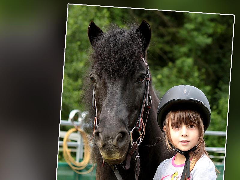HorseBasics Kids Kinderreiten und Reitunterricht für Kids – sowie Reittherapie