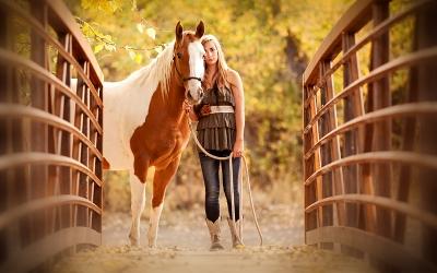 paartherapie-coaching-pferd-mensch-gemeinsam-neue-wege